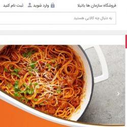 طراحی سایت باتیلا