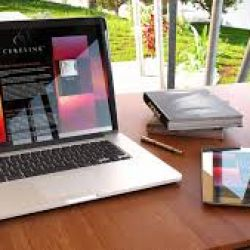 ارتباط میان طراحی سایت و سئو و بهینه سازی
